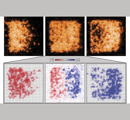 Creating spin textures in a homogeneous Fermi-Hubbard system.