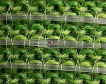 digital fibers on green fabric