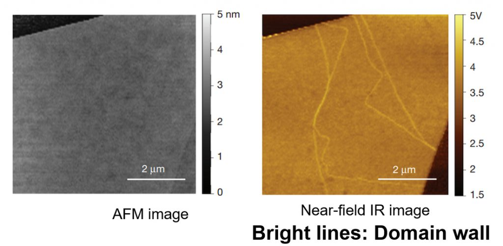 Left is AFM image. Right is Near-field IR image.